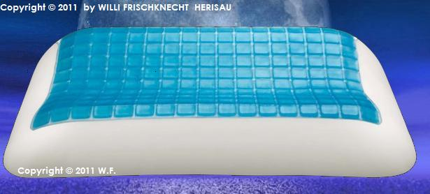 Technogel Anatomic  66x 42